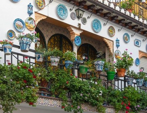 Giardino 2020: quali piante coltivare sul terrazzo o balcone