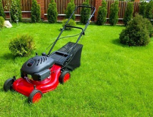 Gli attrezzi elettrici da giardinaggio indispensabili per passare al livello pro
